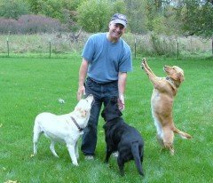 John with clients' dogs Murphy, Rosie and Layla